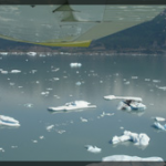 024-Nature-Alaska-DSC00974