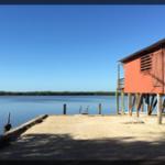057-Nature-Florida-IMG_0043