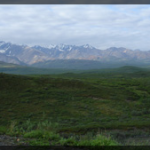 070-Nature-Alaska-DSC00540