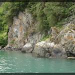 083-Nature-Alaska-DSC01158