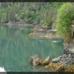 096-Nature-Alaska-DSC01186